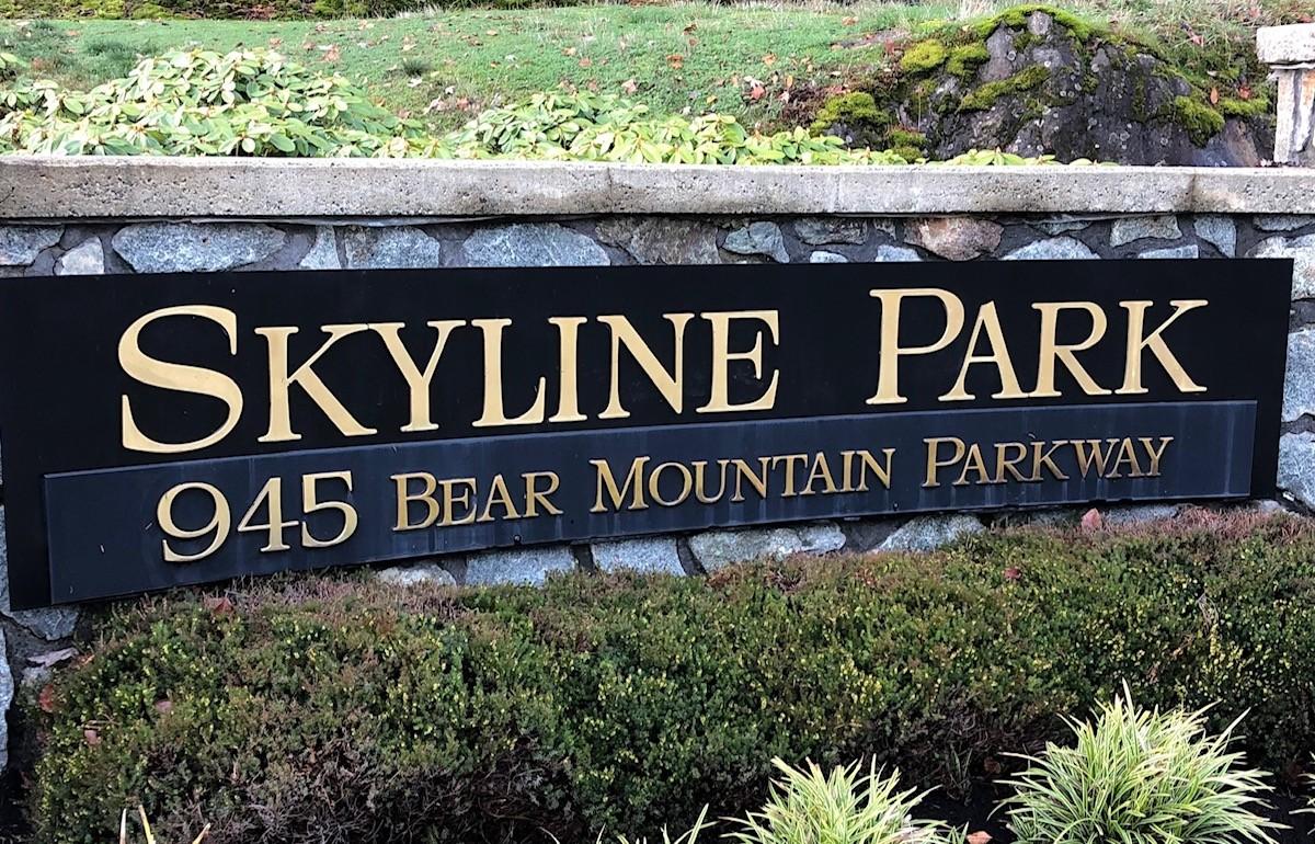 skyline park projex marketing