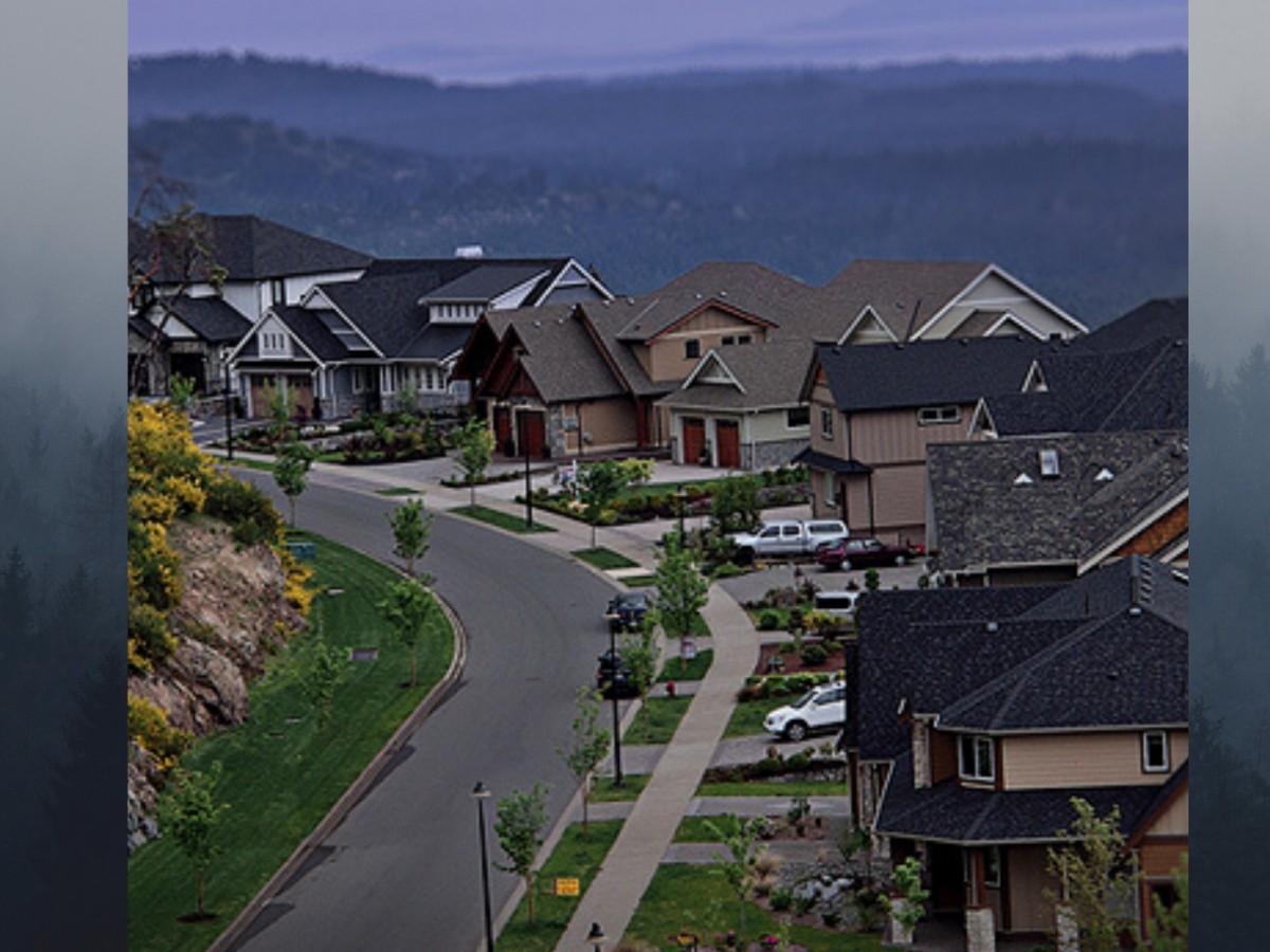 the ridge projex marketing bear mountain